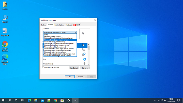 Mouse Pointer in Windows