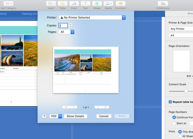 Print a PDF in MacOS Step 2